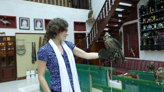 faucon Qatar