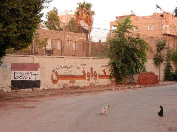 Le Caire tag