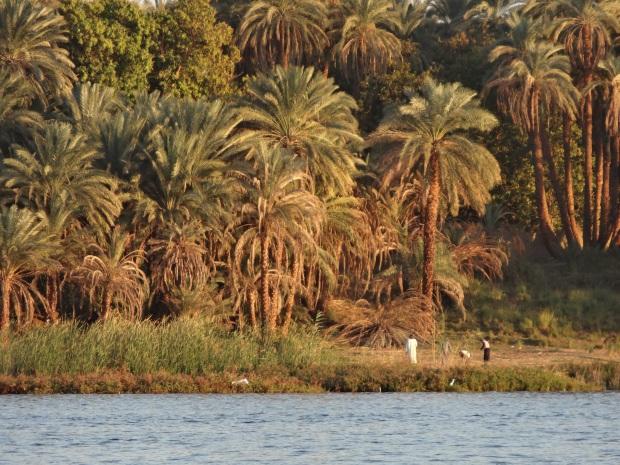 croisière Egypte