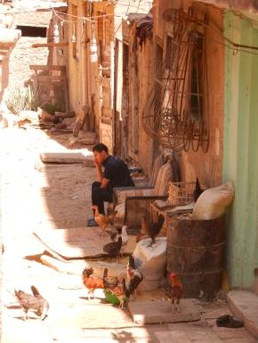 Caire islamique
