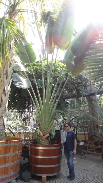 parc botanique Amsterdam
