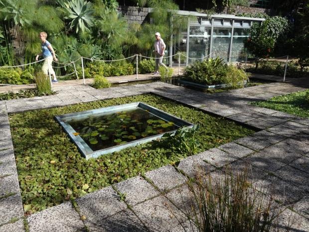 Madère jardin botanique croisière